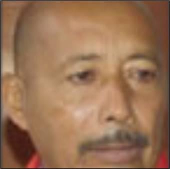 Luis Sánchez, Partido: Puente.