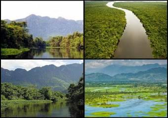 Refugio de Vida Silvestre Bocas del Polochic