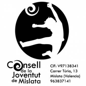 Logo Consell 2