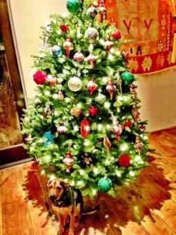 este es el arbol de navidad de miley cyrus.