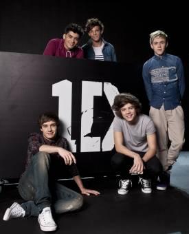 One Direction(Louis Tomlison,Harry Styles,Zayn Malik,Niall Horan y Liam Payne)