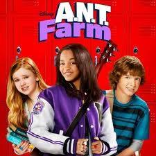 ANT farm!