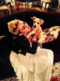 MILEY_FAN: por ser muy popular